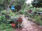 in the garden worksite