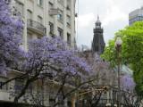 at the Plaza San Martin