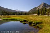 Meadows of Lyell Canyon