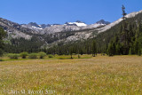 Meadows of upper Lyell Canyon.  Route to Donohue Pass ahead.