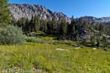 Meadow by Purple Lake