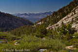 View back while heading up to Silver Pass, Mt Ritter to the right of Ritter Range on skyline.