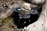 Nightly bear canister setup