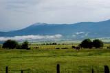 New Meadows,Idaho