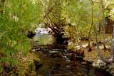 eastern side of the Sierra