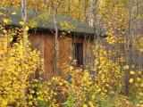 Forgotten Cabin.jpg