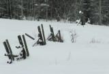 Winter Fence.jpg