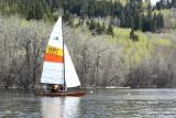 Summer Sails.jpg