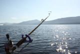 Morning on the Lake2.jpg