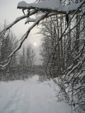 On the trail2.jpg