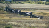 Cariboo Fence.jpg
