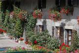 Fleurissement optimal rue Bidon