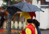 Jester's umbrella!