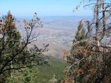 View of Globe, Arizona from FR 651