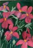 Flock of Flowers   2-09
