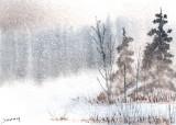 December Snow  12-10