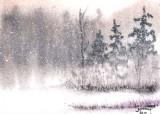 December Snow II  12-10