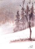 December Snow III  12-10