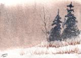 Fog & Snow  12-10