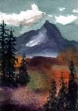 Mt. Williams  12-10
