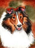 Collie - watercolor, 5 x 7