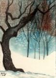 Old Oak Tree  3-08