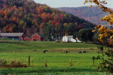 Along Highway 30 in western Vermont
