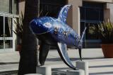 Shark Byte Art - San Jose, CA