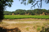 Backroads of Sonoma County