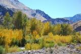 Topaz Lake, Antelope Valley & West Walker River