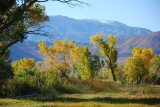 Autumn in the Eastern Sierras - October 2007