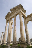 Apamea pictures - Afamia pictures - أفاميا