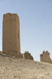 Palmyra apr 2009 0030.jpg