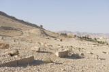 Palmyra apr 2009 0038.jpg