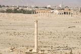 Palmyra apr 2009 0041.jpg