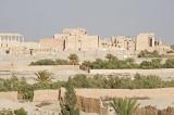 Palmyra apr 2009 0042.jpg