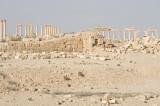 Palmyra apr 2009 0049.jpg