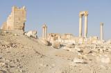 Palmyra apr 2009 0055.jpg