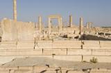 Palmyra apr 2009 0064.jpg