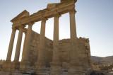 Palmyra apr 2009 0071.jpg