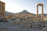 Palmyra apr 2009 0072.jpg