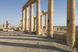 Palmyra apr 2009 0077.jpg