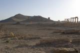 Palmyra apr 2009 0078.jpg