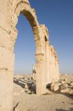 Palmyra apr 2009 0080.jpg