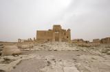 Palmyra apr 2009 0198.jpg