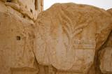 Palmyra apr 2009 0211.jpg