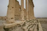 Palmyra apr 2009 0235.jpg