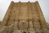 Palmyra apr 2009 0240.jpg