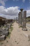 Bosra apr 2009 0699.jpg