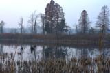 IN_Lake05.jpg